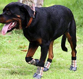 abcGoodefg Pet Dog Puppy Waterproof Nonslip Sports Socks Shoes Boots, Rubber Sole, Comfortable Design 4