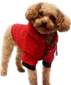Alfie Pet by Petoga Couture - Mason Active Hoodie