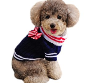 Alfie Pet by Petoga Couture - Sunny Cable Knit Sweater with Ribbon