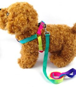 BOSUN(TM)Colorful Nylon Dog Harness & Leash Set Puppy & Cat Harness & Lead Set For Chihuahua Teddy Poodle