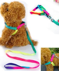 BOSUN(TM)Colorful Nylon Dog Harness & Leash Set Puppy & Cat Harness & Lead Set For Chihuahua Teddy Poodle 6