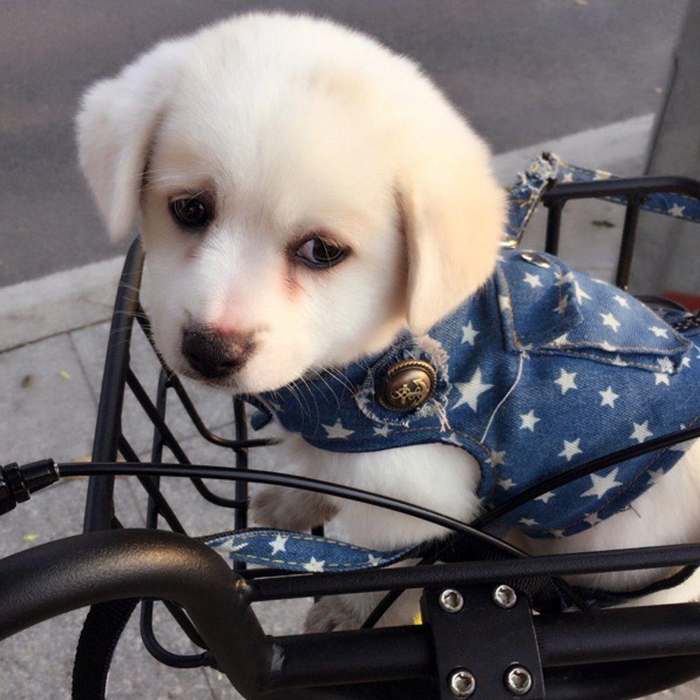 Beirui Denim Dog Harness Vest And Leash Set Soft Blue