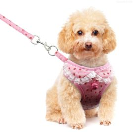 Didog Adjustable Pet Mesh Vest Harness and Leash Set with Cute Bell for Puppy Small Medium Dogs and Cats 5