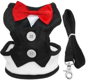 Didog Velvet Tuxedo Gentleman suit Dog Harness Vest with Handle for Small Medium Dogs,Pug, Jack Russell,Terrier,Poodle,Puppy
