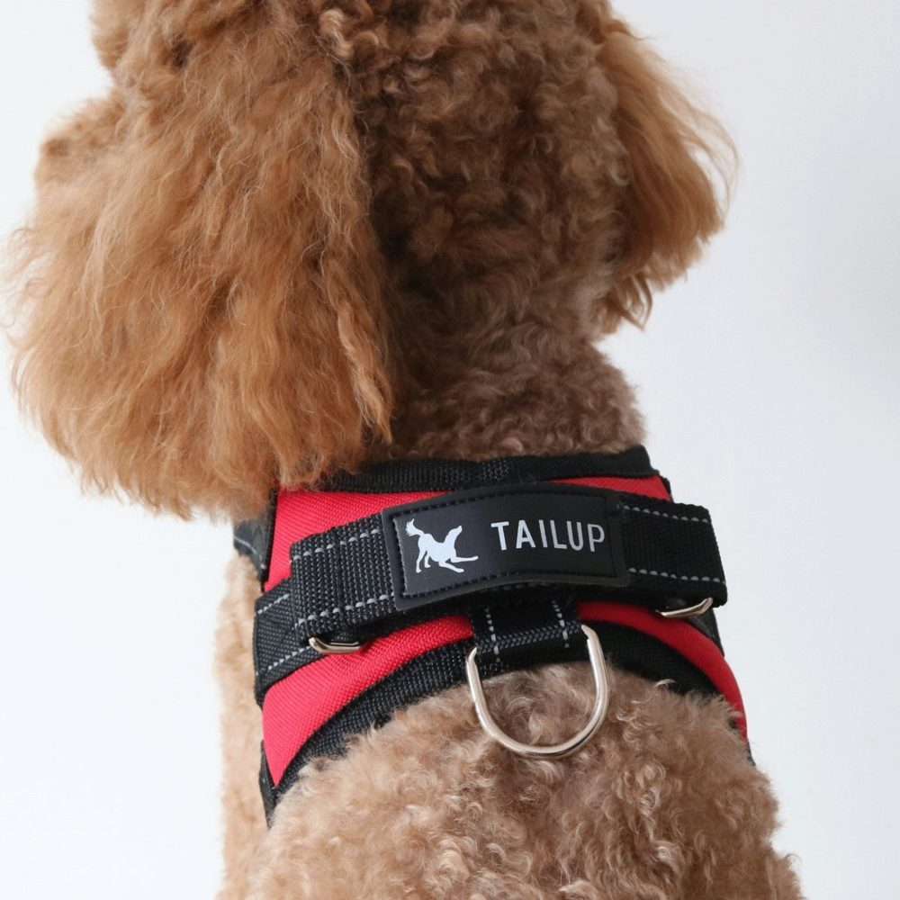 Dog Harness For Small Medium Large Outdoor Easy Put On