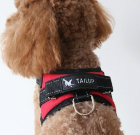 Dog Harness - For Small Medium Large Outdoor Easy Put On and Off Back Leash D-Ring Handle Control No Pull Non Choke Adjustable Vest Size Reflective Threads Oxford Mesh Canvas Jeans Farbic 8