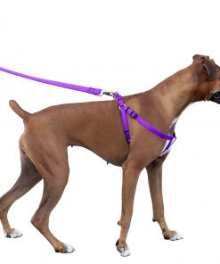 Majestic Pet Dog Harness-Best No Pull Harness for All Dogs-Sizes Large, Medium, Small-Adjustable and Heavy Duty No-Pull Leash & Harness-Perfect Lightweight Training & Walking Collar-100% Guarantee!