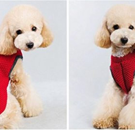 Mummumi Small Pet Dog Winter Clothes, Puppy Warm Embroidered Little Bones Knitted Sweater Cat Knitwear 2