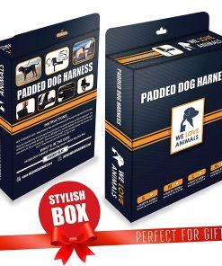 Padded Dog Harness Set - No More Struggling 8