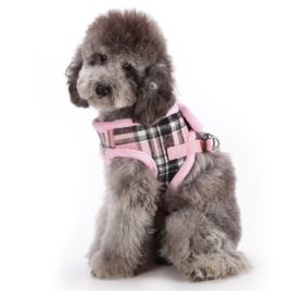 SCT Dog Winter Woolen Plush Grid Vest Leash Set