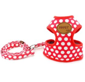 SMALLLEE_LUCKY_STORE New Soft Mesh Nylon Vest Pet Cat Small Medium Dog Harness Dog Leash Set Leads Red S