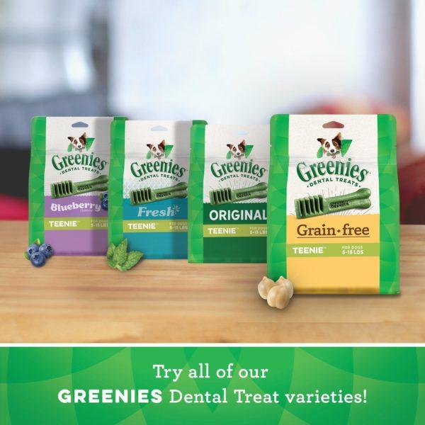 GREENIES Grain Free Dental Dog Chews, Teenie, 96 Treats, 27 Ounces; Grain Free Dental Dog Treats For Clean Teeth and Healthy Gums 6