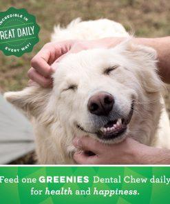 GREENIES Grain Free Dental Dog Chews, Teenie, 96 Treats, 27 Ounces; Grain Free Dental Dog Treats For Clean Teeth and Healthy Gums 8