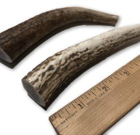 Premium Elk Antlers for Dogs by Doggie Dealz All Natural Antler Dog Chew Organic, Healthy & Long Lasting Dog Treat Wild Sourced in the USA