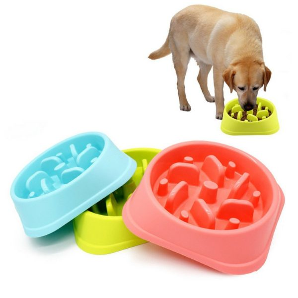 SLOW FEEDER DOG BOWL DOG DRINK WATER BOWL – FUNY AND HEALTHY INTERACTIVE FEEDER STOPS DOG BLOAT CONDITION BY EATING MORE SLOWLY 8