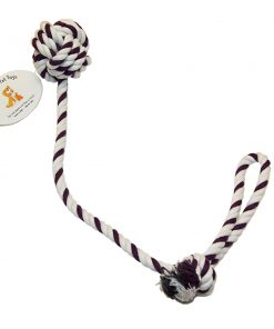 Everlast Pet Toys Rope & Leash Bundle For Dogs Knotted Ball Pull Rope Dog Park Leash 2