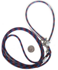 Small Dog Leash - Sky Blue 5 Foot Leash - Ligh Enough For Pomeranian, Toy Poodle, Chihuahua, Or Terrier And Strong Enough For A Great Dane
