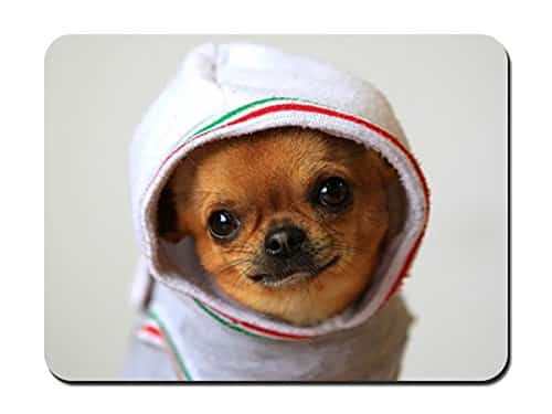 """Dog Chihuahua Puppy Clothing Costume Mouse Pad - 8.6""""x7.1""""(22cmx18cm)"""