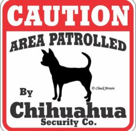 """Dog Yard Sign """"Caution Area Patrolled By Chihuahua Security Company"""""""