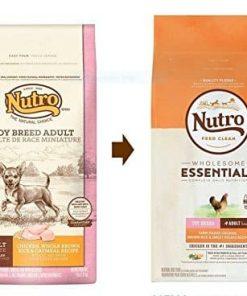 Nutro Toy Breed Adult Dry Dog Food Farm-Raised Chicken, Brown Rice & Sweet Potato Recipe 2