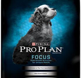 Purina Pro Plan FOCUS Puppy Small Breed Chicken & Rice Formula Dry Dog Food - (1) 18 lb. Bag