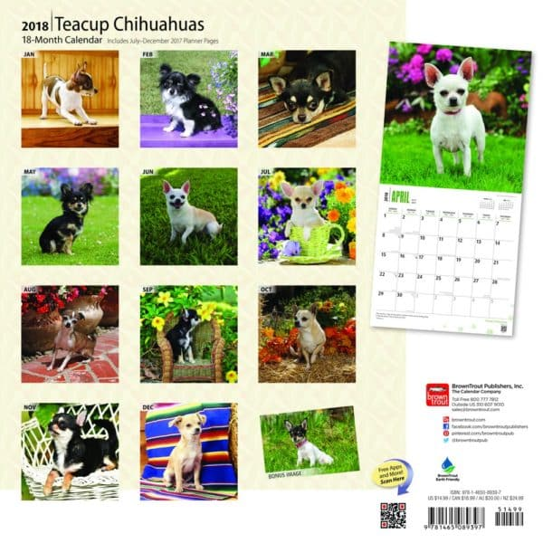 Teacup Chihuahuas 2018 12 x 12 Inch Monthly Square Wall Calendar, Animals Small Dog Breeds (Multilingual Edition) 2