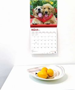Teacup Chihuahuas 2019 12 x 12 Inch Monthly Square Wall Calendar, Animals Small Dog Breeds 4