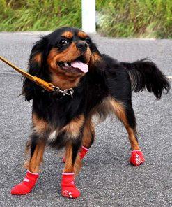 Traction Control Cotton Socks Indoor Dog Nonskid Knit Socks 5 Pairs Random Color 9