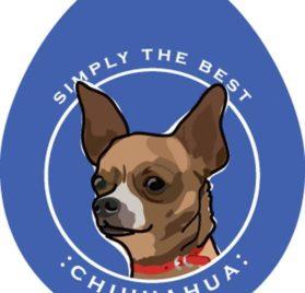 "Chihuahua Sticker 4x4"""