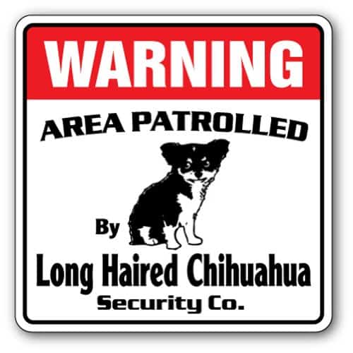 LONG HAIR CHIHUAHUA Security Sign Area Patrolled guard gag funny owner lover