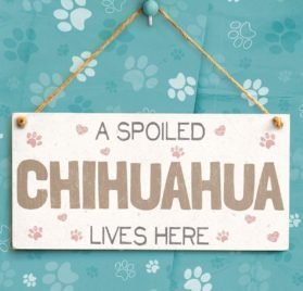 """Meijiafei A Spoiled Chihuahua Lives Here - Cute PVC Dog Sign Plaque 10""""x5"""" 2"""
