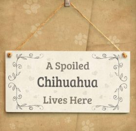 "Meijiafei A Spoiled Chihuahua Lives Here - Super Cute Small Hanging Sign A Cute Gift Idea For Chihuahua Dog Owners 10""x5"" 2"