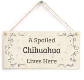 "Meijiafei A Spoiled Chihuahua Lives Here - Super Cute Small Hanging Sign A Cute Gift Idea For Chihuahua Dog Owners 10""x5"""