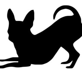 11x14 Chihuahua Style 3 Stencil Made From 4 Ply Matboard