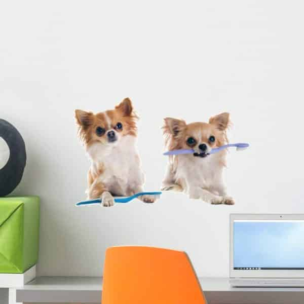 Wallmonkeys Chihuahuas and Toothbrush Wall Decal Peel and Stick Graphic (18 in W x 12 in H) WM188830