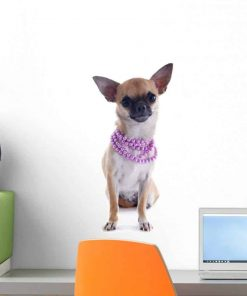 Wallmonkeys Puppy Chihuahua and Collar Wall Decal Peel and Stick Graphic WM163985 (18 in H x 12 in W)