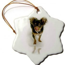 3dRose Dogs Chihuahua - Long Hair Chihuahua - 3 inch Snowflake Porcelain Ornament (orn_880_1) 2