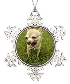 EvelynDavid Snowflake Ornament Ideas for Decorating Christmas Trees Dog Licking Lips Chihuahua Dog in Yard Photo House Snowflake Ornaments