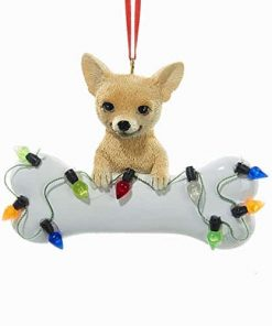 "Kurt Adler 2 75"" Resin Chihuahua With bone Ornament"