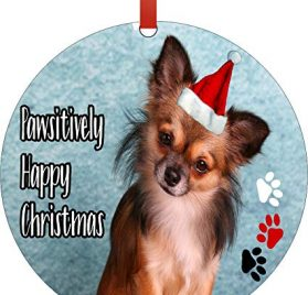 Ornament Dog - Chihuahua in a Santa Claus Hat - Pawsitively Merry Christmas - Round Shaped Flat Semigloss Aluminum Christmas Ornament Tree Decoration