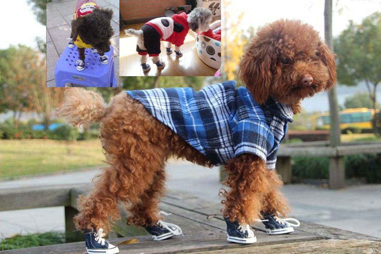 Petfavorites Cute Puppy Pet Dog Sporty Shoes Lace Up Blue Canvas