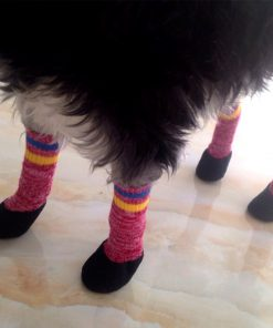 Alfie Pet by Petoga Couture - Brett Set of 4 Rubber Dipped Dog Paw Protection Socks - Color- Red, Size- XS 2