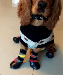 Alfie Pet by Petoga Couture - Wallace 2 Set of 4 Rubber Dipped Dog Paw Protection Socks - Size- XXS 2