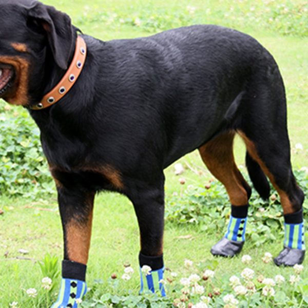 Alfie Pet by Petoga Couture - Wallace 2 Set of 4 Rubber Dipped Dog Paw Protection Socks - Size- XXS 3
