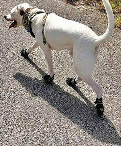 EXPAWLORER Waterproof Dog Boots Reflective Non Slip Pet Booties for Medium Large Dogs Black 4 Pcs 6