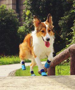 abcGoodefg 4pcs Pet Dog Outdoor Socks, Waterproof Rainproof Nonslip Shoes Boots Sneaker, Cotton Socks+Rubber Sole, Free Magic Shoes Band! (#0, Blue) 7