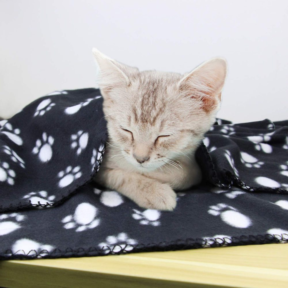 Ak Kyc 3 Pack 40 Quot X 28 Quot Puppy Blanket Cushion Dog Cat Fleece Blankets
