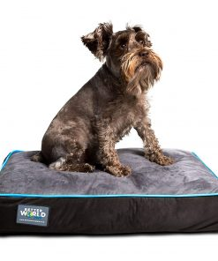 """Better World Pets 5-Inch Thick Waterproof Orthopedic Memory Foam Dog Bed with 180 GSM Removable Washable Cover, Small (24"""" x 18"""" x 5"""")"""