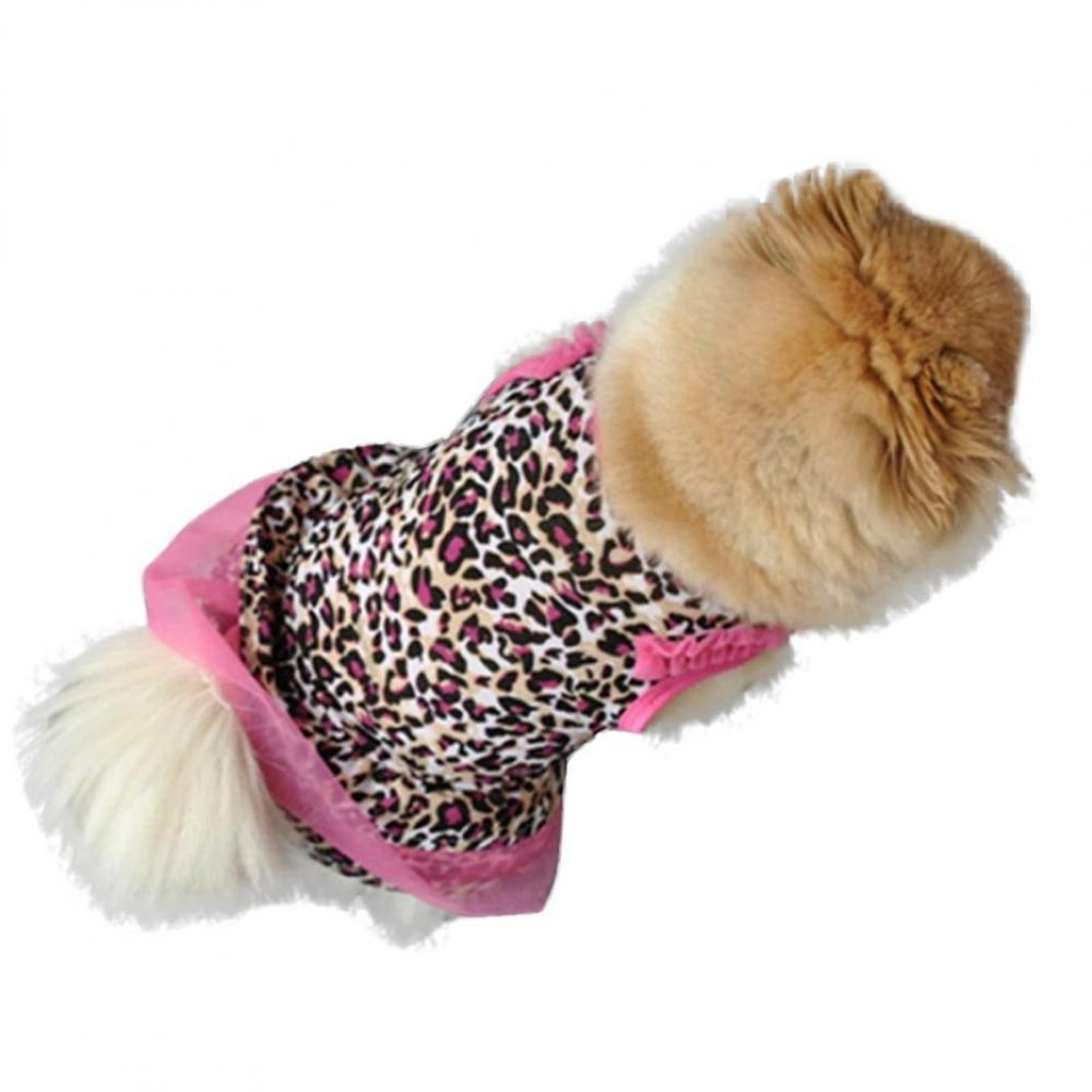 1250c7eb7304 Pet Clothes, Clearance! Tloowy Summer Girls Dog Cat Puppy Cute
