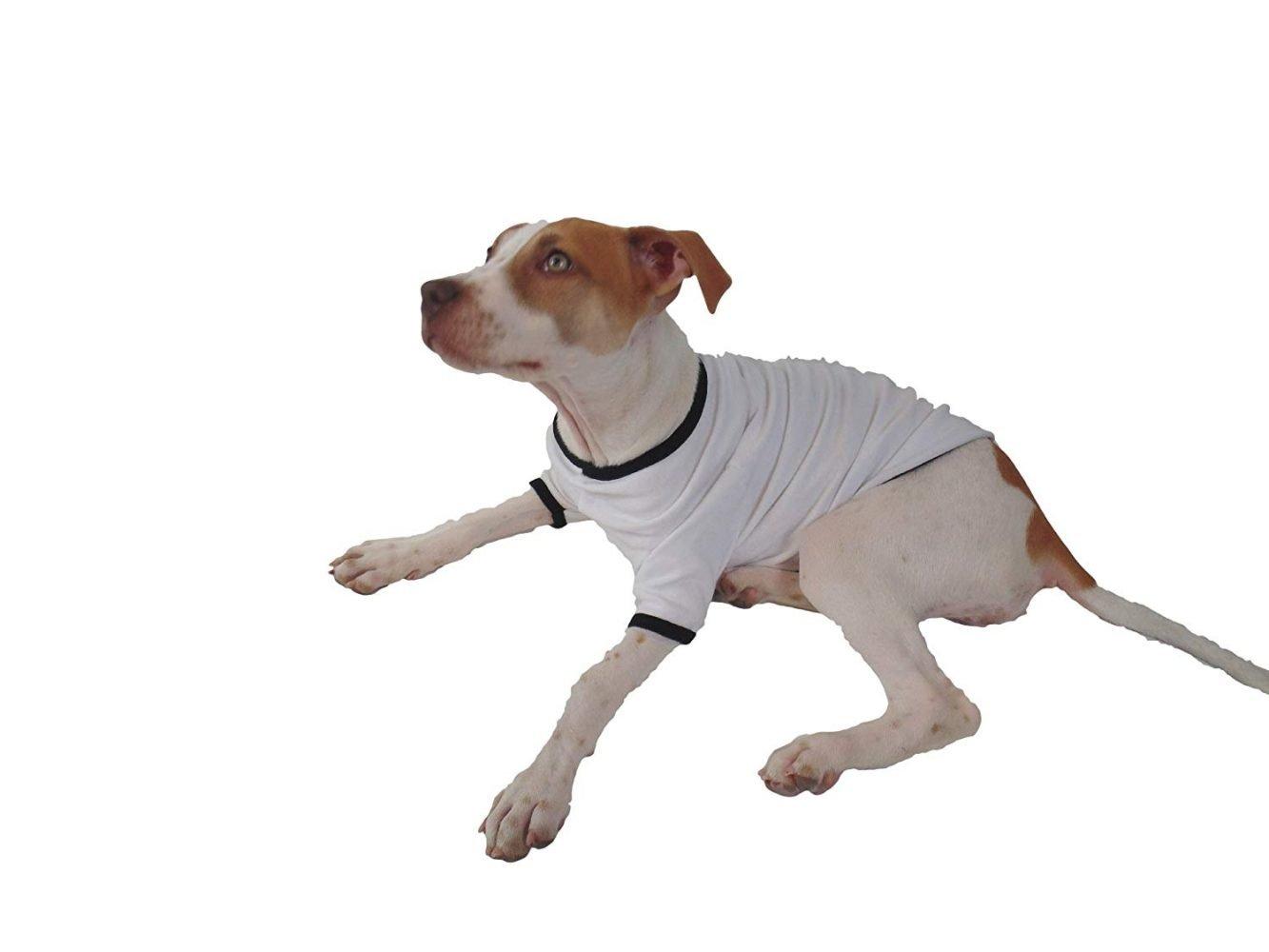 3a390adc1e70 ... TooLoud Kiss Me I'm Irish St Patricks Day Dog Shirt 2